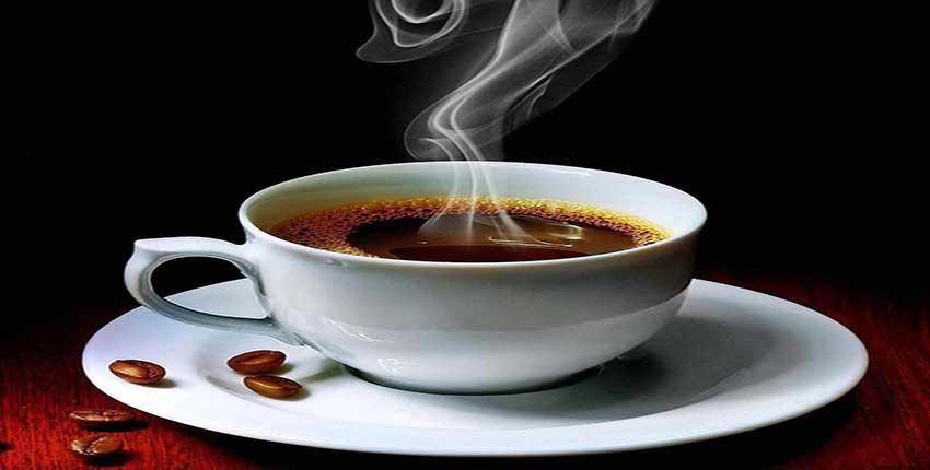 کافه اسپادانا برگر ۱