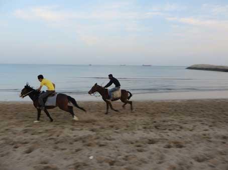 اسب سواری در کیش