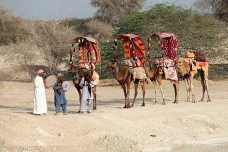 شتر سواری کیش